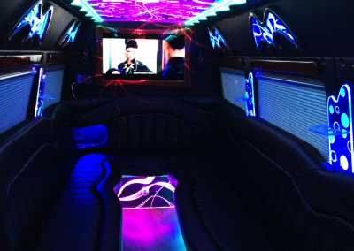 Mercedes Sprinter Party Van