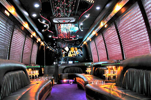 Party Buses allow enough room to stand up