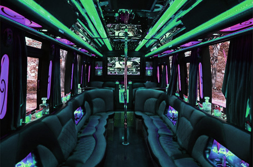 Rent Party Bus for 45 Passengers and save 20%